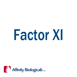 Factor XI Products