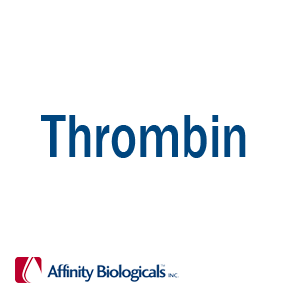 Thrombin Products